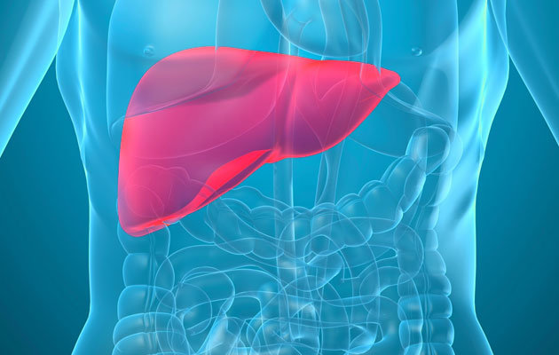 Caring for your Liver