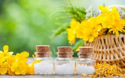 Spotlight on Homeopathic Arnica
